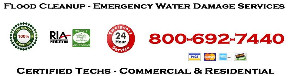 Sewage Cleanup and Service Restoration Pros